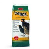 پلیت پرندگان حشره خوار