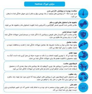 فواید استفاده از غذای خشک سگ