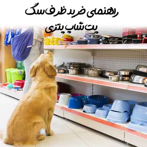 راهنمای خرید ظرف سگ