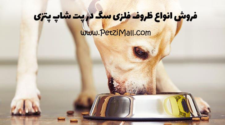 بهترین ظرف سگ