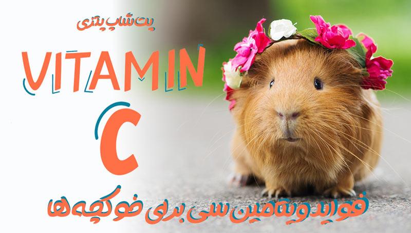 ویتامین خوکچه