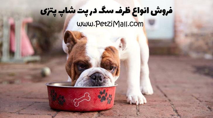 انواع ظرف سگ