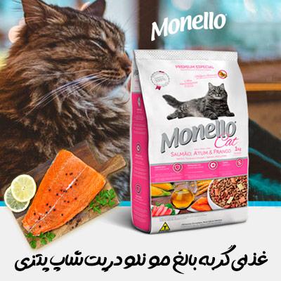 غذای گربه بالغ خارجی