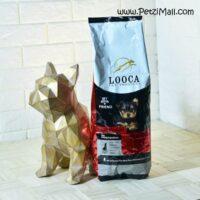غذای خشک توله سگ لوکا