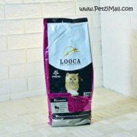 غذای بچه گربه لوکا