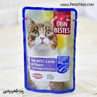 پوچ گربه داین بست